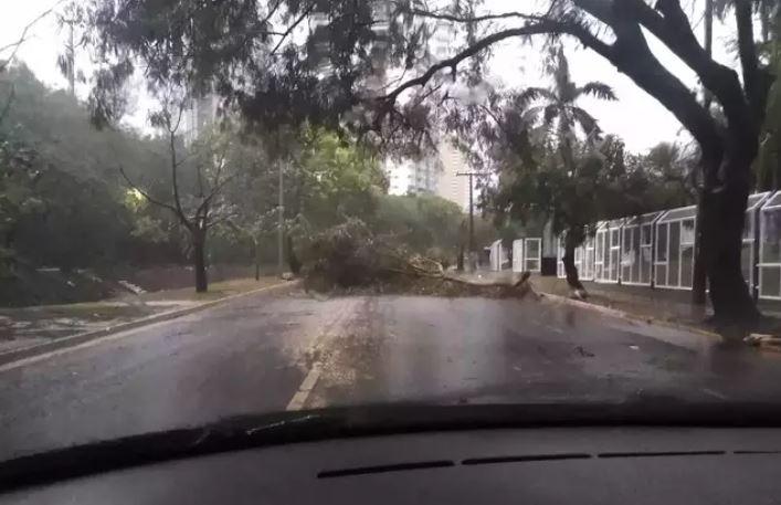 Chuva intensa causa estragos e alagamentos em Campo Grande