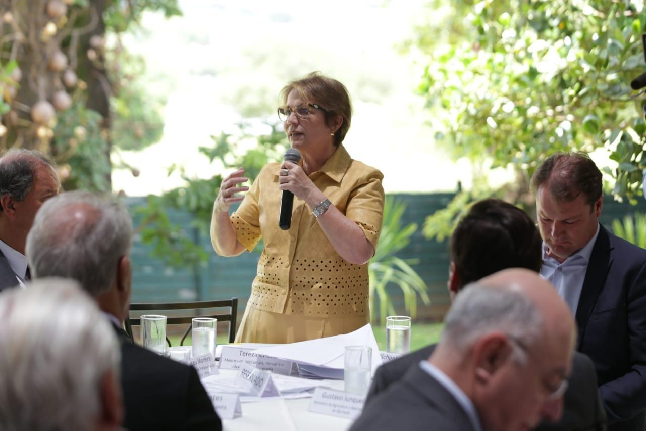 Ministra Tereza Cristina faz balanço de 2019 para Frente Parlamentar da Agropecuária - Guilherme Martimon/Mapa