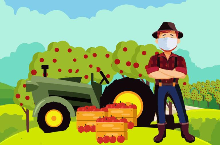 Mapa e Anater lançam cartilha com medidas de higiene para o período de colheita