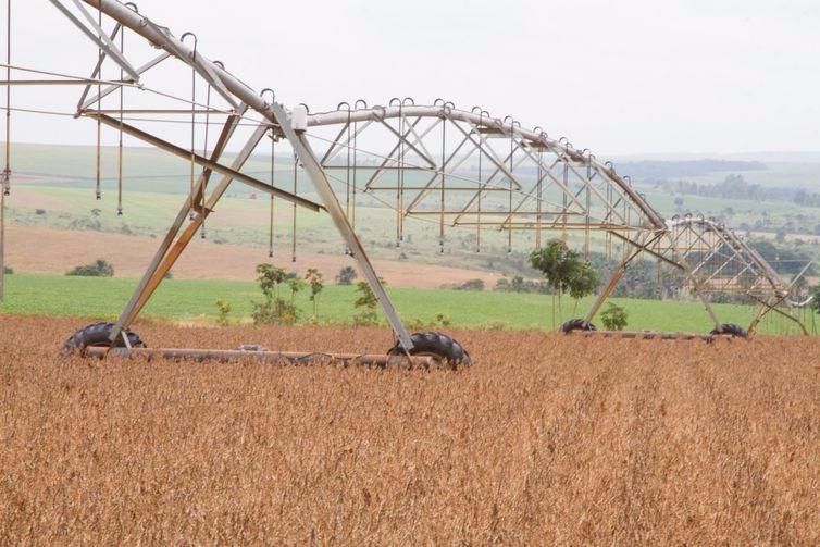 Produção de grãos da safra 2019/2020 será recorde, indica estimativa da Conab - Tony Oliveira/CNA/Direitos Reservados