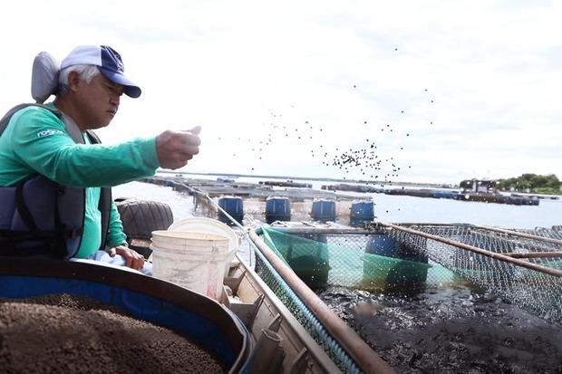 Cursos e Assistência Técnica e Gerencial do Senar/MS transformam pescadores em 'empresários da piscicultura'