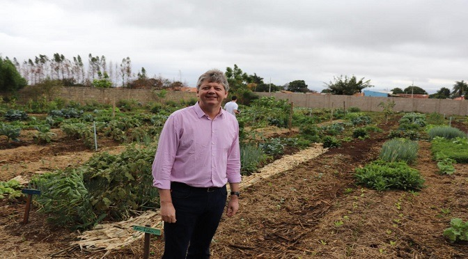 Governo lança plataforma para agricultores familiares de MS venderem online