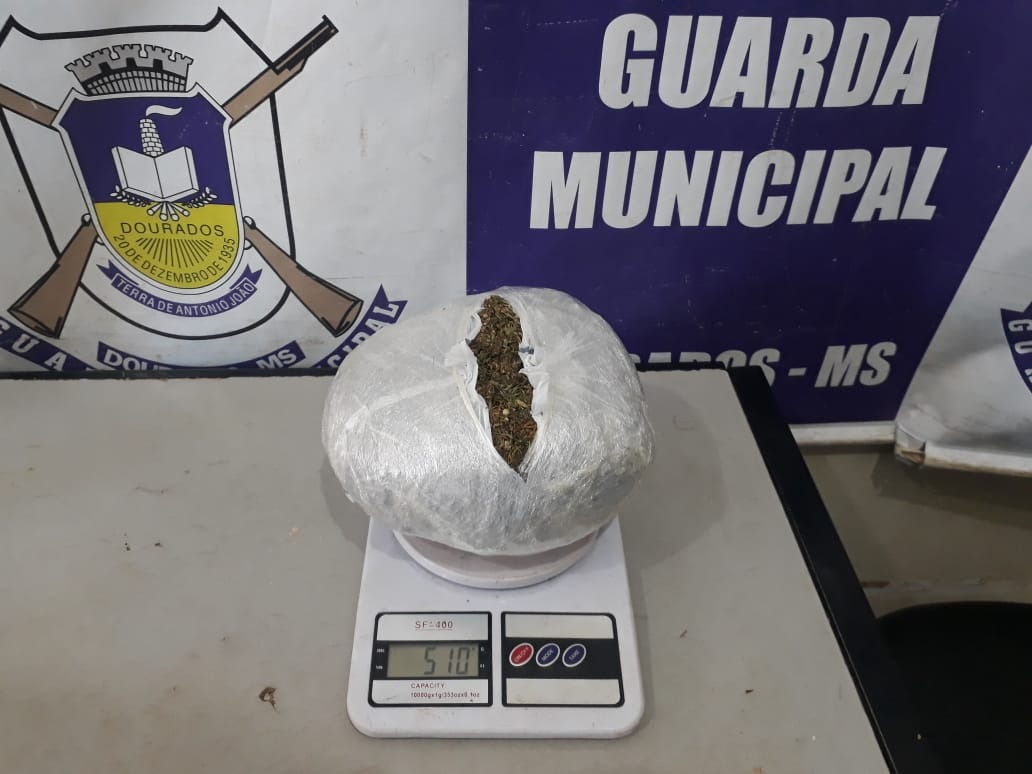 Divulgação/Guarda Municipal
