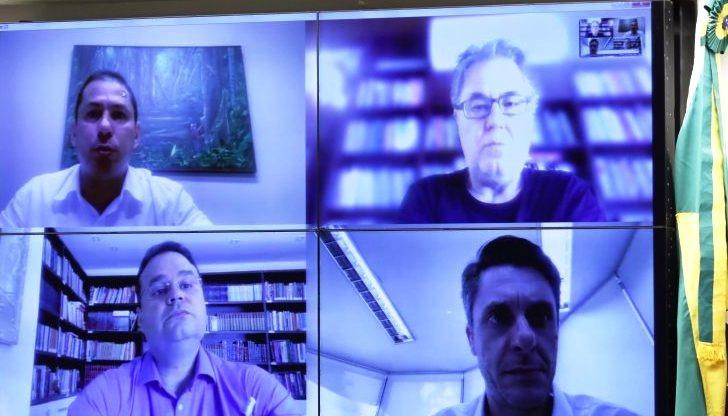 Por conta da pandemia, reunião foi realizada por videoconferência. Luis Macedo/Câmara dos Deputados
