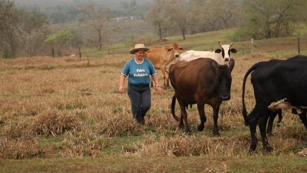 Produtora triplica produtividade de leite com Assistência Técnica e Gerencial do Senar/MS em Eldorado